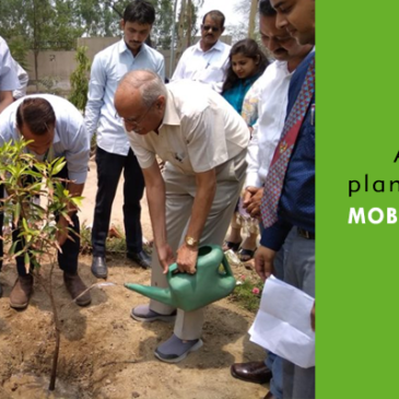 5 Thousand Plants To Expand Green Cover Under Sanjeevani Project By Mobius Foundation